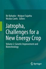 Jatropha, Challenges for a New Energy Crop