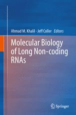 Molecular Biology of Long Non-coding RNAs