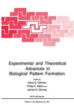 Experimental and Theoretical Advances in Biological Pattern Formation