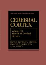 Models of Cortical Circuits