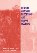 Central Auditory Processing and Neural Modeling