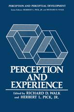 Perception and Experience