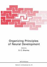 Organizing Principles of Neural Development