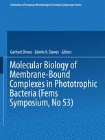 Molecular Biology of Membrane-Bound Complexes in Phototrophic Bacteria