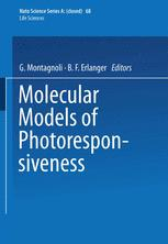 Molecular Models of Photoresponsiveness