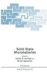 Solid State Microbatteries