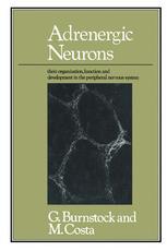 Adrenergic Neurons