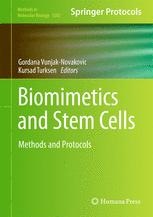 Biomimetics and Stem Cells