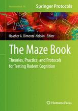 The Maze Book