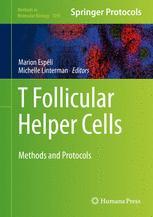 T follicular Helper Cells