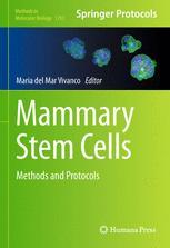 Mammary Stem Cells