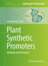 Plant Synthetic Promoters