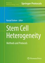 Stem Cell Heterogeneity