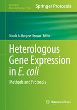 Heterologous Gene Expression in E.coli