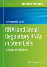 RNAi and Small Regulatory RNAs in Stem Cells