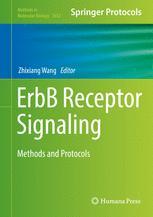 ErbB Receptor Signaling