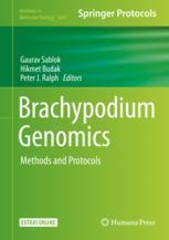 Brachypodium Genomics