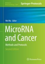MicroRNA and Cancer