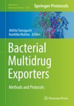 Bacterial Multidrug Exporters