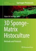 3D Sponge-Matrix Histoculture