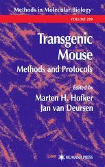 Transgenic Mouse