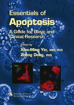Essentials of Apoptosis