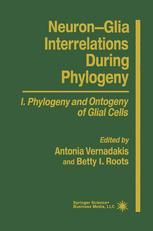 Neuron-Glia Interrelations During Phylogeny
