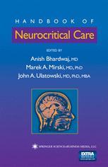 Handbook of Neurocritical Care