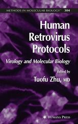 Human Retrovirus Protocols