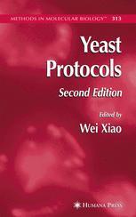 Yeast Protocol