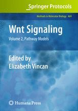Wnt Signaling