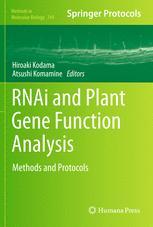 RNAi and Plant Gene Function Analysis