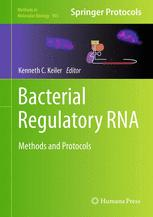 Bacterial Regulatory RNA