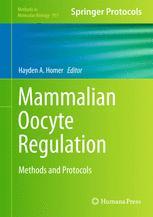 Mammalian Oocyte Regulation