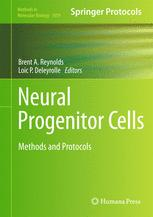 Neural Progenitor Cells