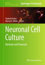 Neuronal Cell Culture