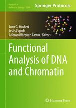 Functional Analysis of DNA and Chromatin
