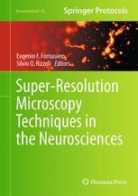 Super-Resolution Microscopy Techniques in the Neurosciences