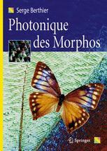 Photonique des Morphos