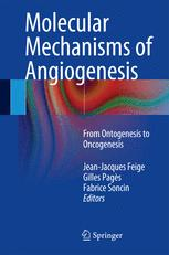 Molecular Mechanisms of Angiogenesis
