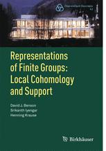 Representations of Finite Groups: Local Cohomology and Support