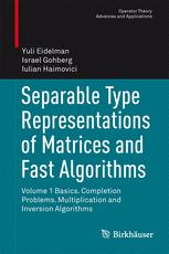 Separable Type Representations of Matrices and Fast Algorithms
