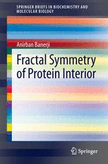 Fractal Symmetry of Protein Interior