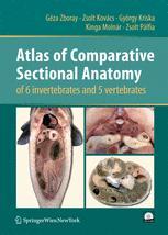 Atlas of Comparative Sectional Anatomy of 6 invertebrates and 5 vertebrates