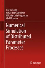 Numerical Simulation of Distributed Parameter Processes