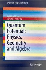 Quantum Potential: Physics, Geometry and Algebra