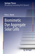 Biomimetic Dye Aggregate Solar Cells