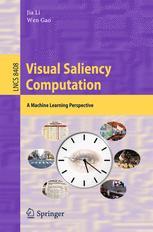 Visual Saliency Computation