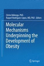Molecular Mechanisms Underpinning the Development of Obesity