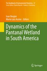 Dynamics of the Pantanal Wetland in South America